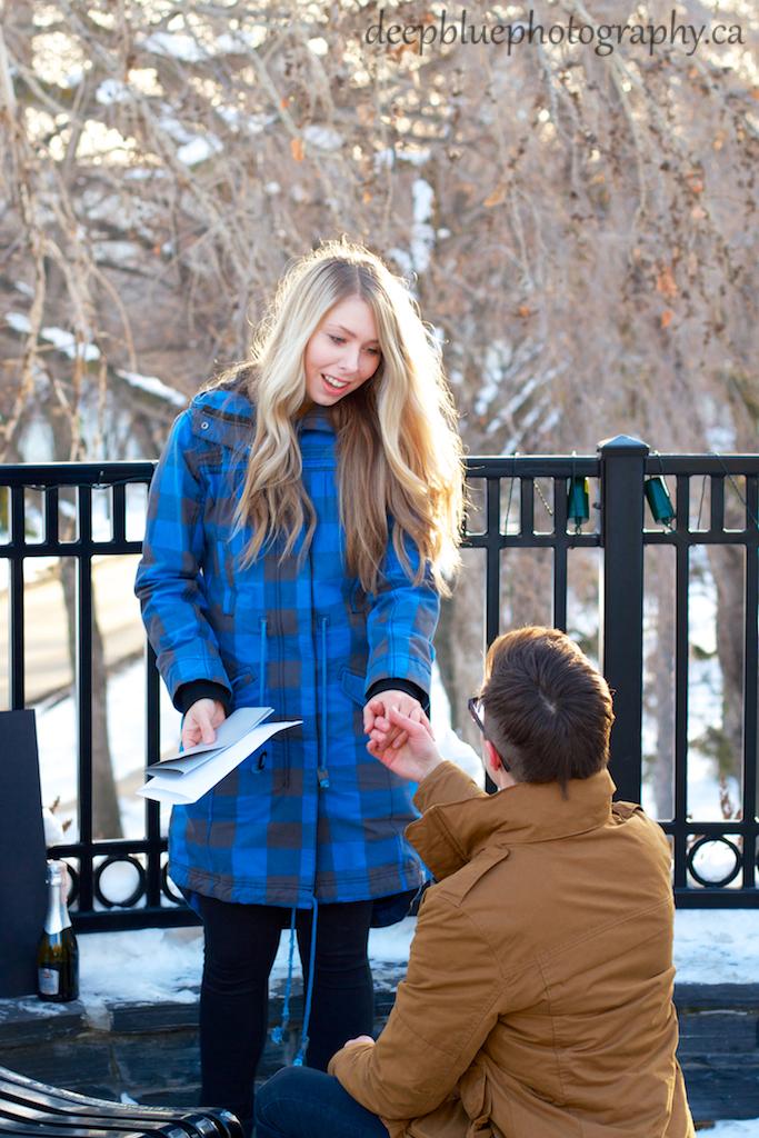 Photo of Surprise Proposal Edmonton