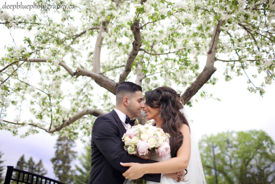 Edmonton Lebanese Wedding Photography – Wayne & Mervit