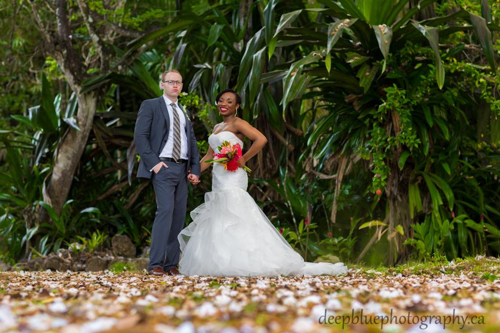 Destination wedding portraits at Shaw Park Garden