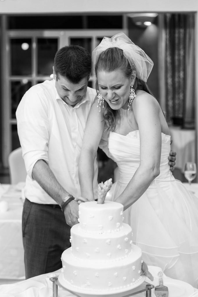 Destination Wedding Cake Cutting