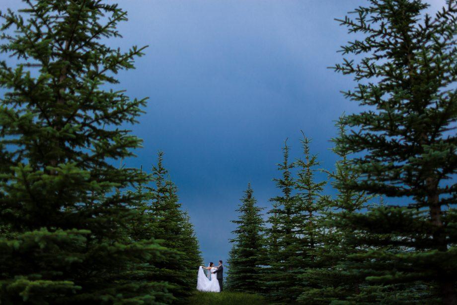 Lions Garden Wedding – Lindsay & Mitch