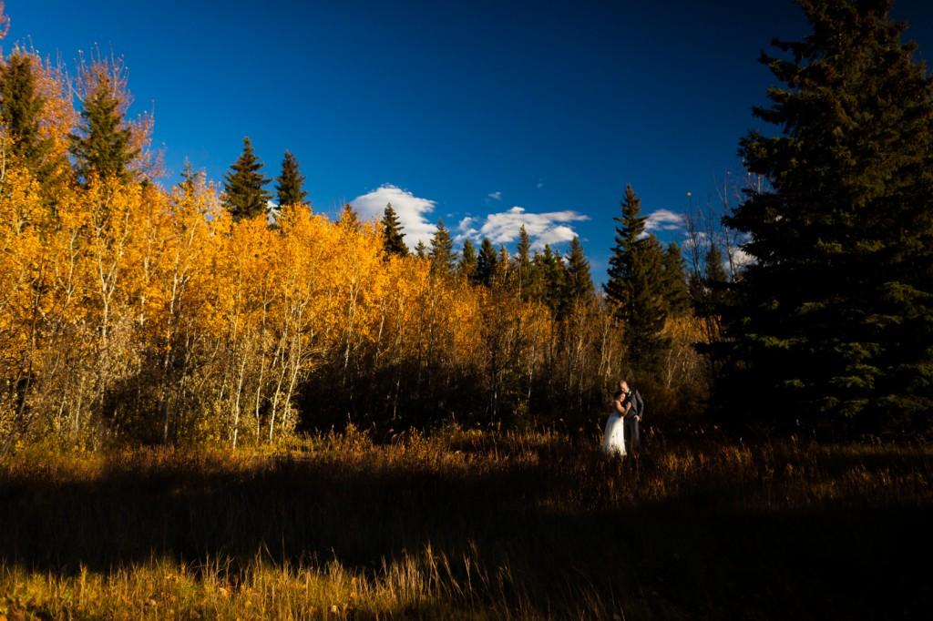 Red Deer Autumn Wedding - Outdoor Portraits
