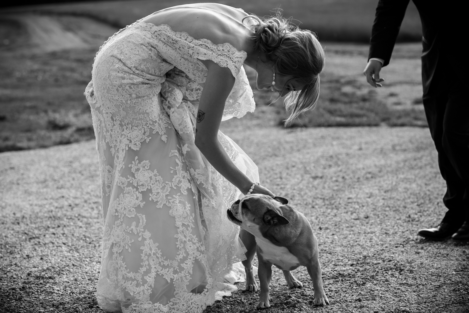 Wedding Photos with Dog