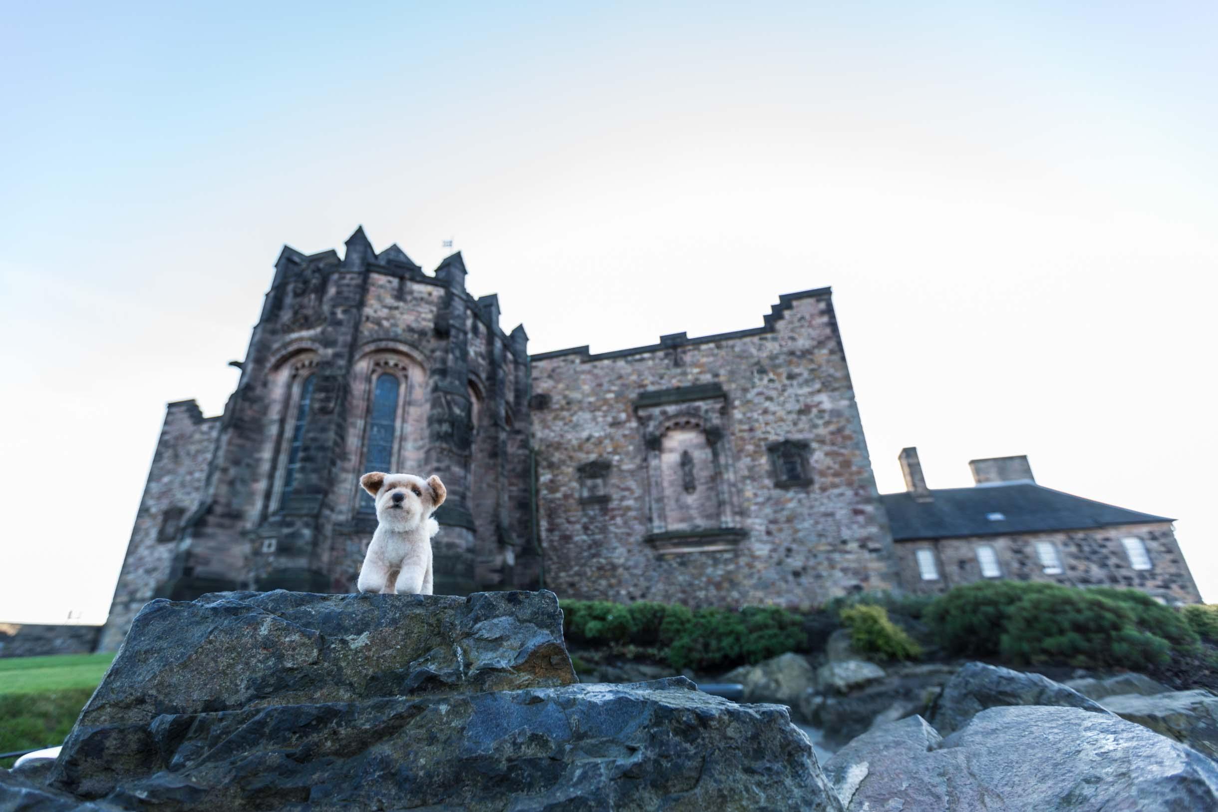 Picture Taken While Exploring Edinburgh - castle in edinburgh