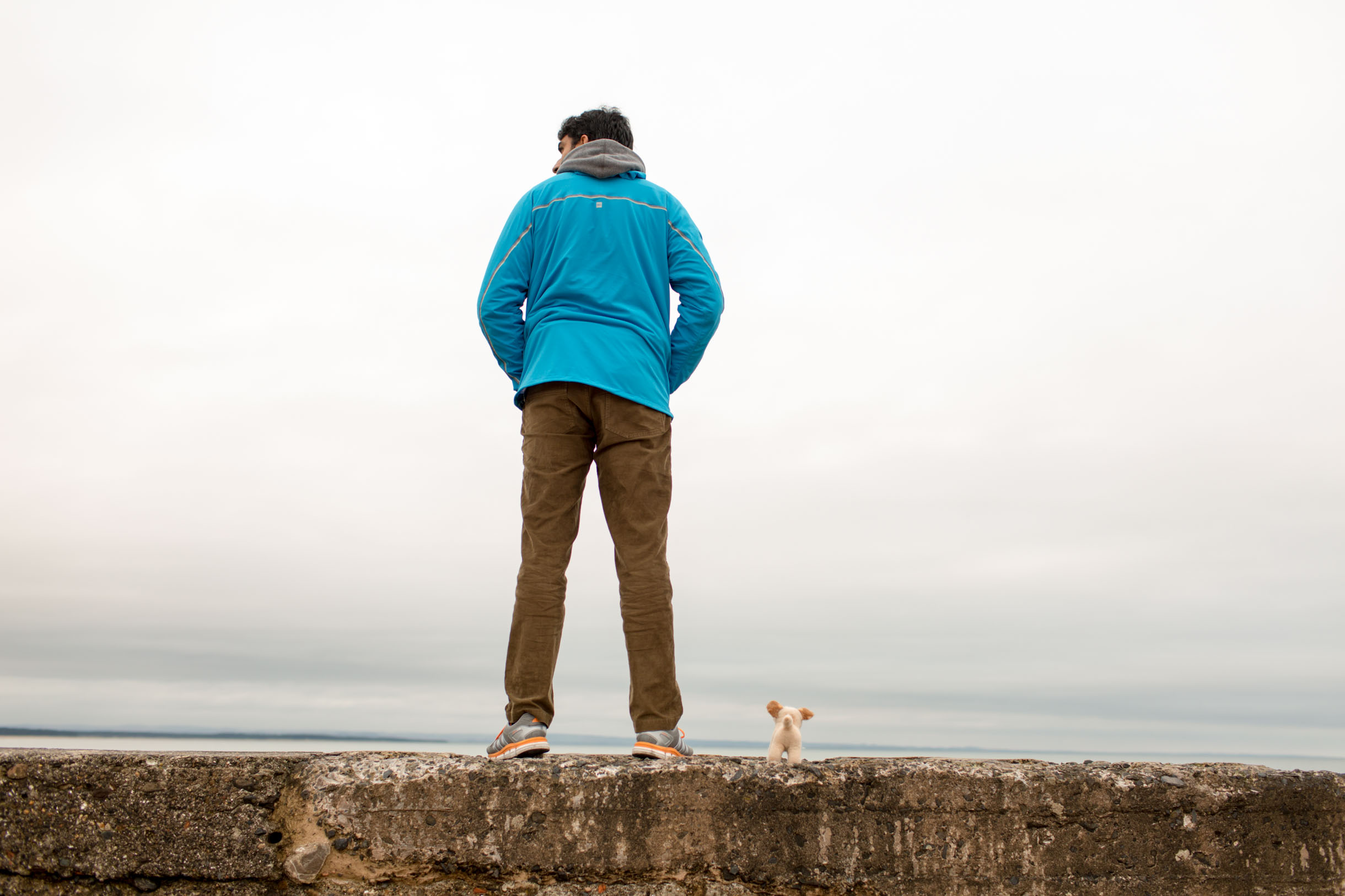 st andrews scotland sea wall