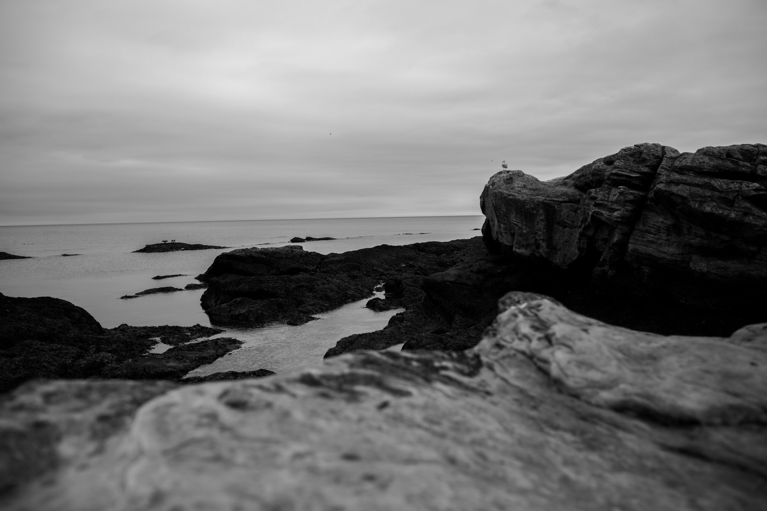 sea view st andrews scotland