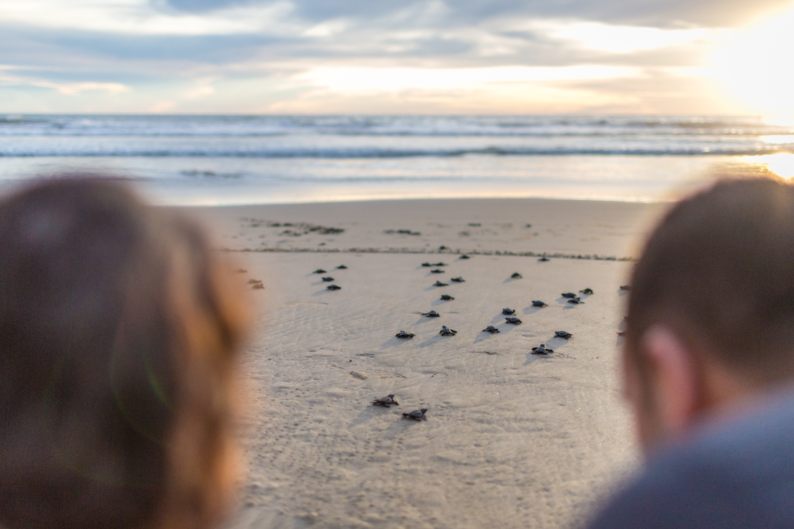 releasing turtles into the ocean during an Ixtapa Destination Wedding