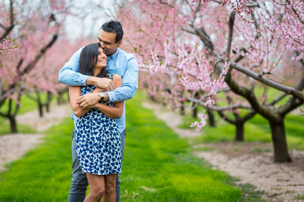 Cherry blossom engagement photos - Niagara on the Lake Engagement Photography