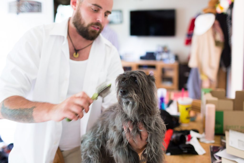 Groom getting the dog ready for the wedding