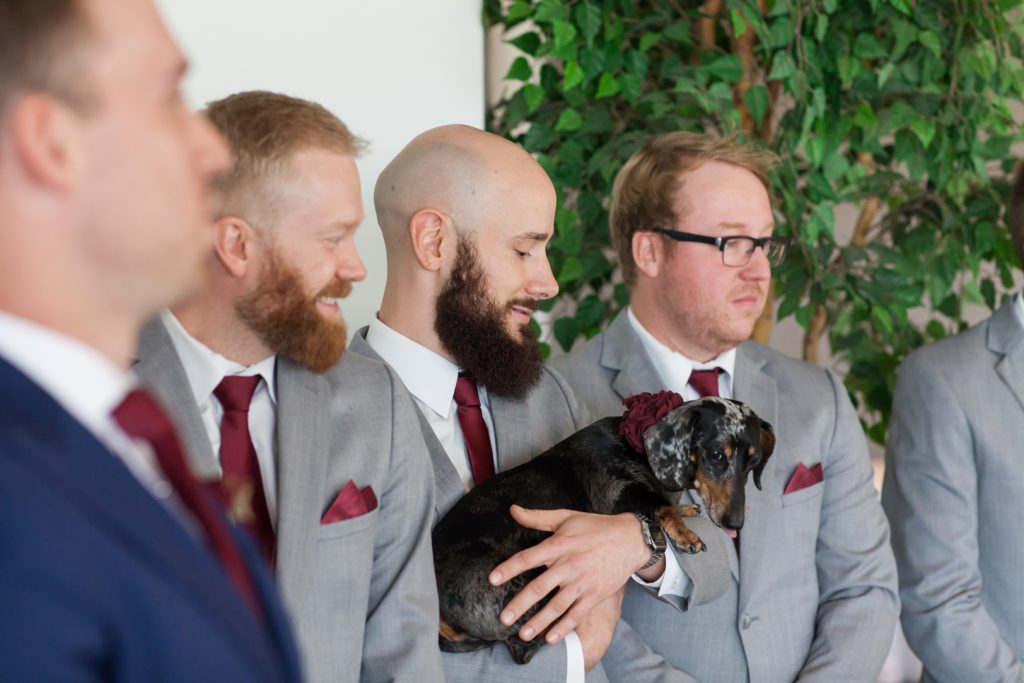 Riverview room at Shaw Conference Centre wedding ceremony with dogs