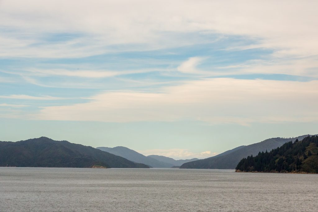 View of the sounds from the Bluebridge Ferry to Picton