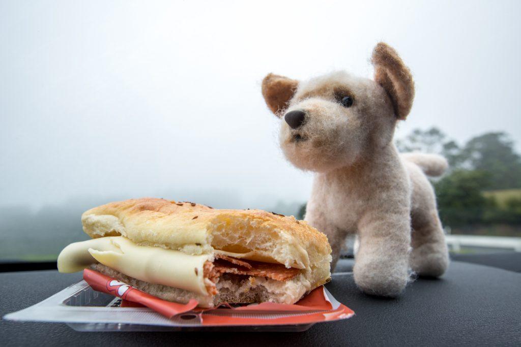 Travel Bella Enjoying Lunch While Driving the Coromandel Peninsula