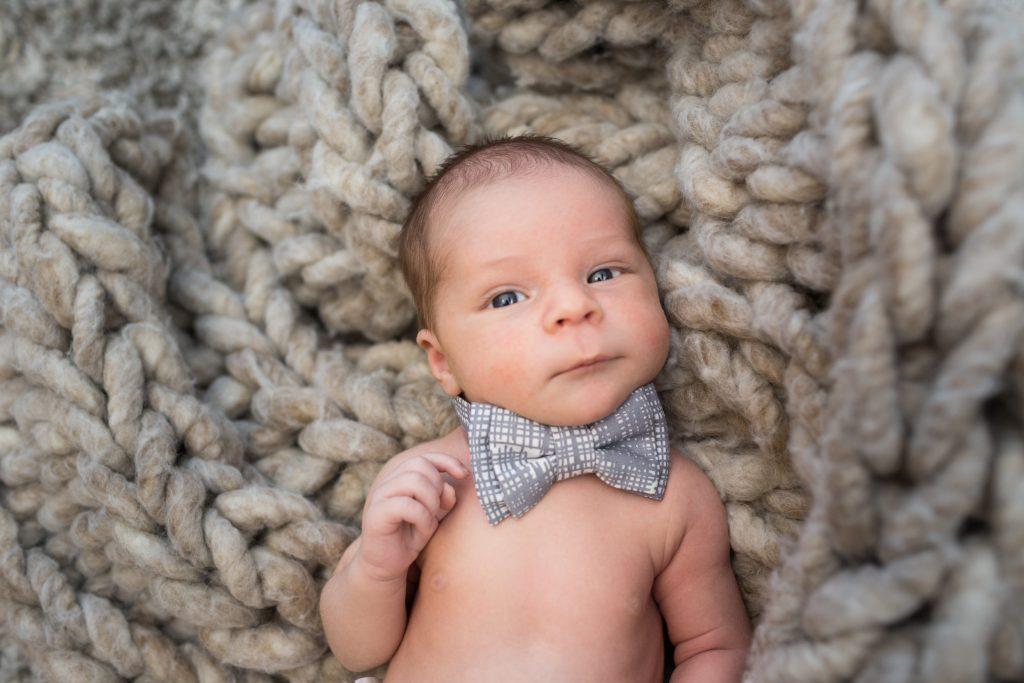 Newborn Family Portraits