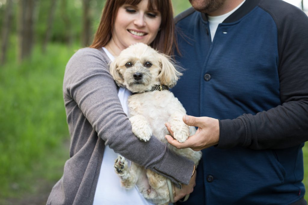 Wetaskiwin engagement picture of couple with their dog