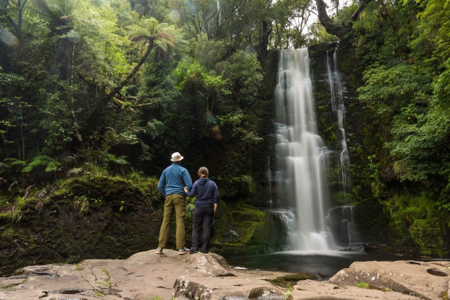 Cathedral Caves, McLean Falls, Petrified Forest – Exploring Curio Bay