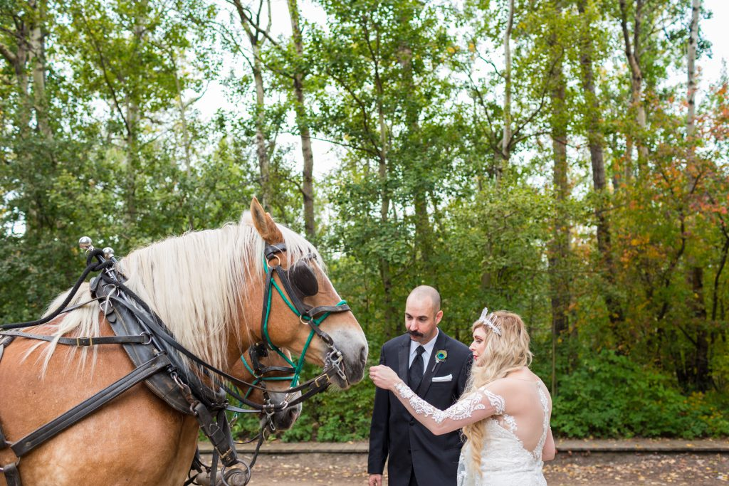 fort edmonton park horse drawn carriage