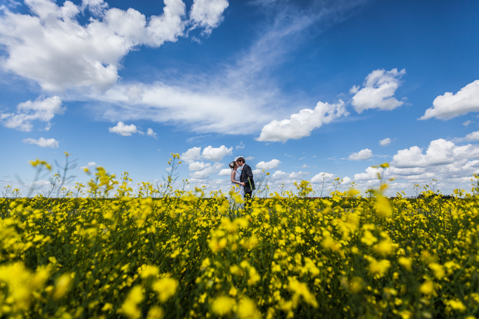 Wedding Photos in Canola Field