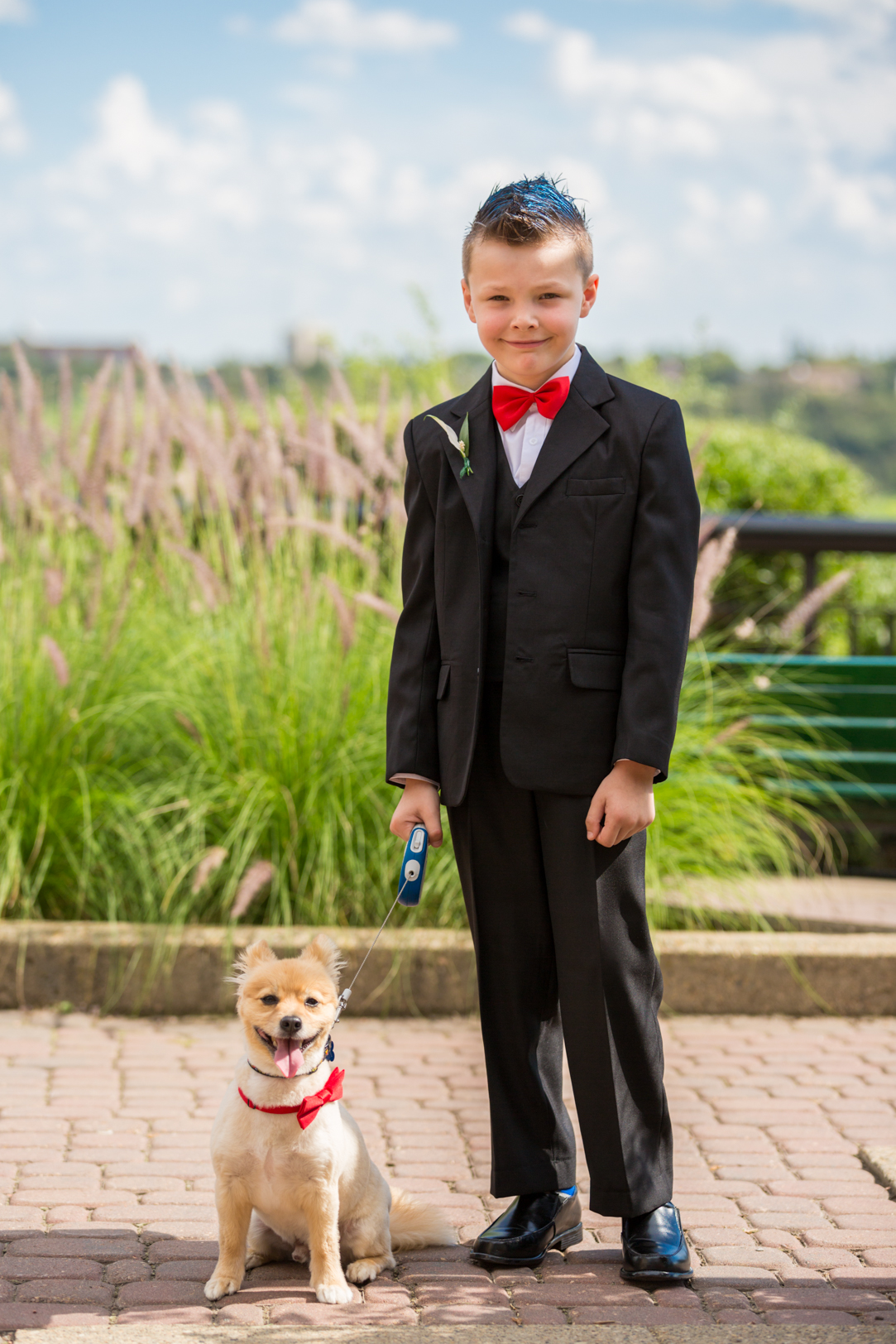 Photo of Doggy Ringbearer