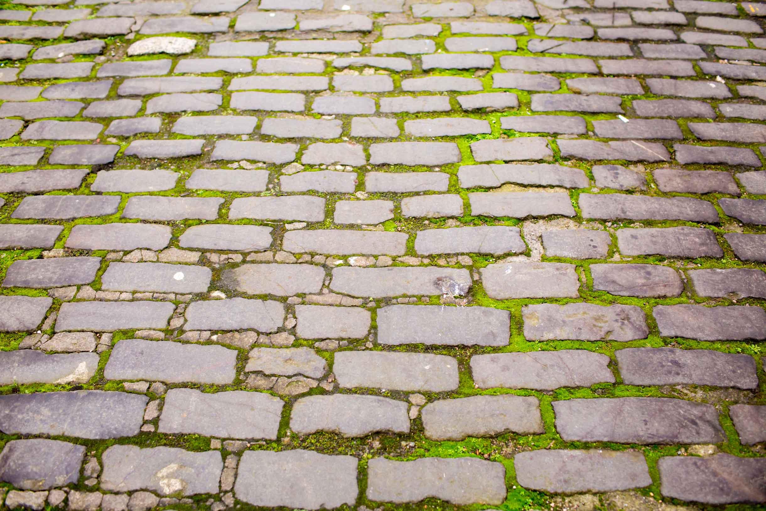st andrews cobblestone walkway