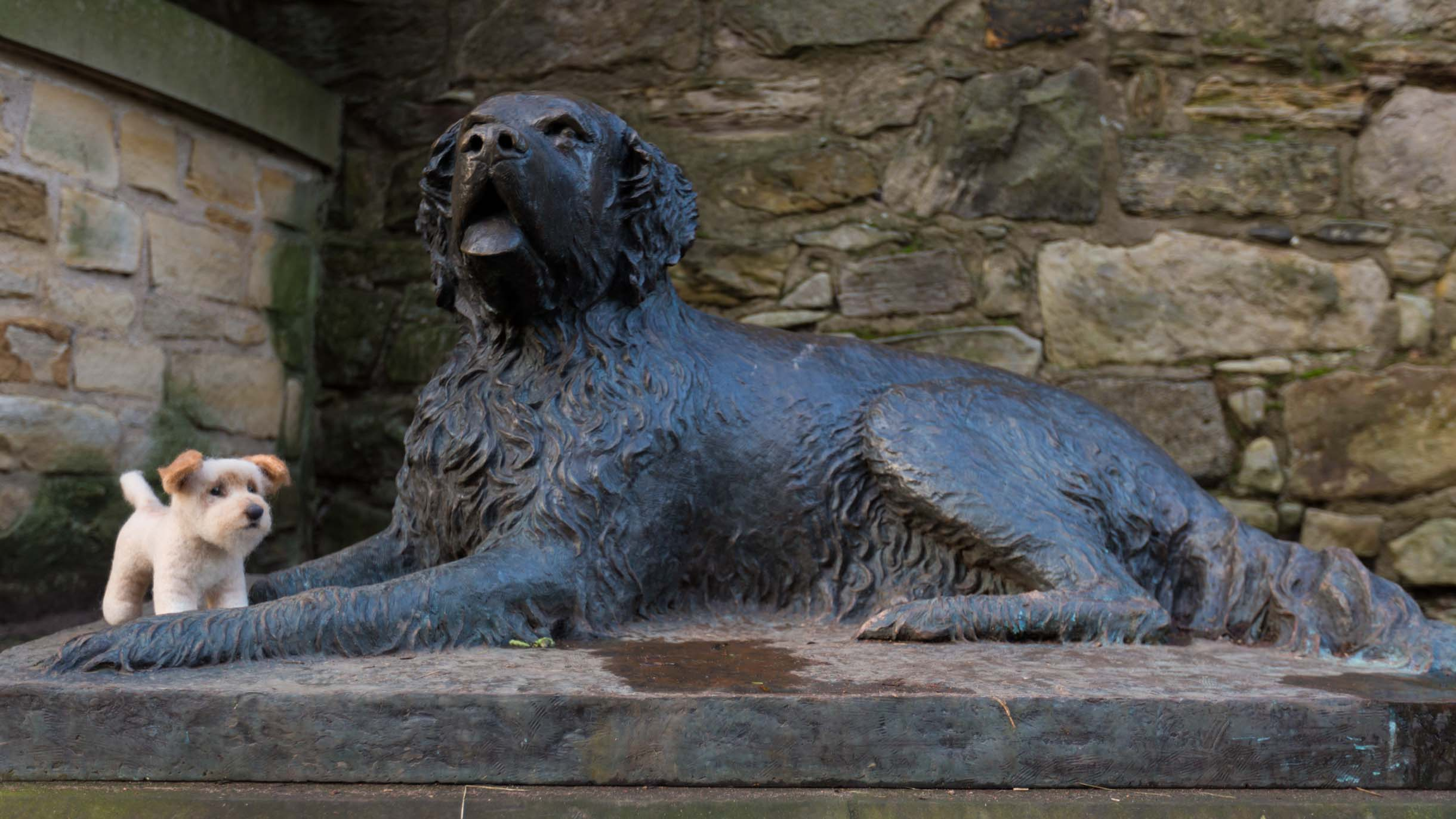 Picture Taken While Exploring Edinburgh - statue of dog in edinburgh