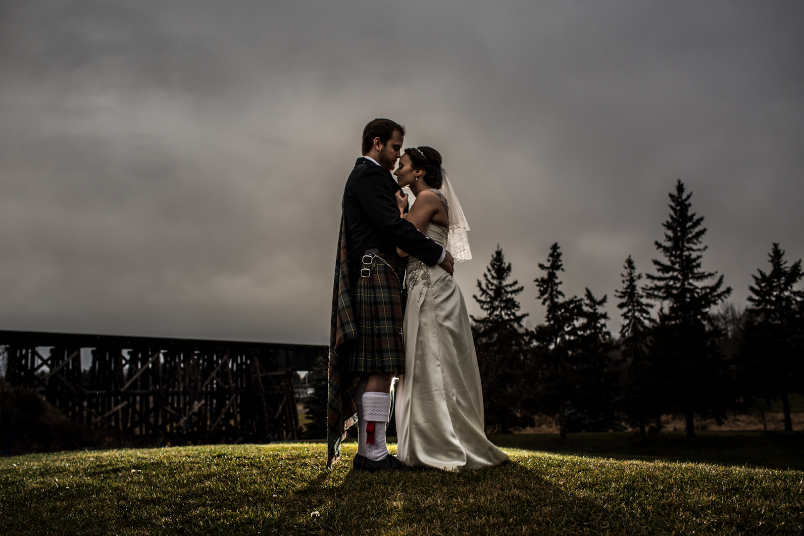 dramatic wedding portrait