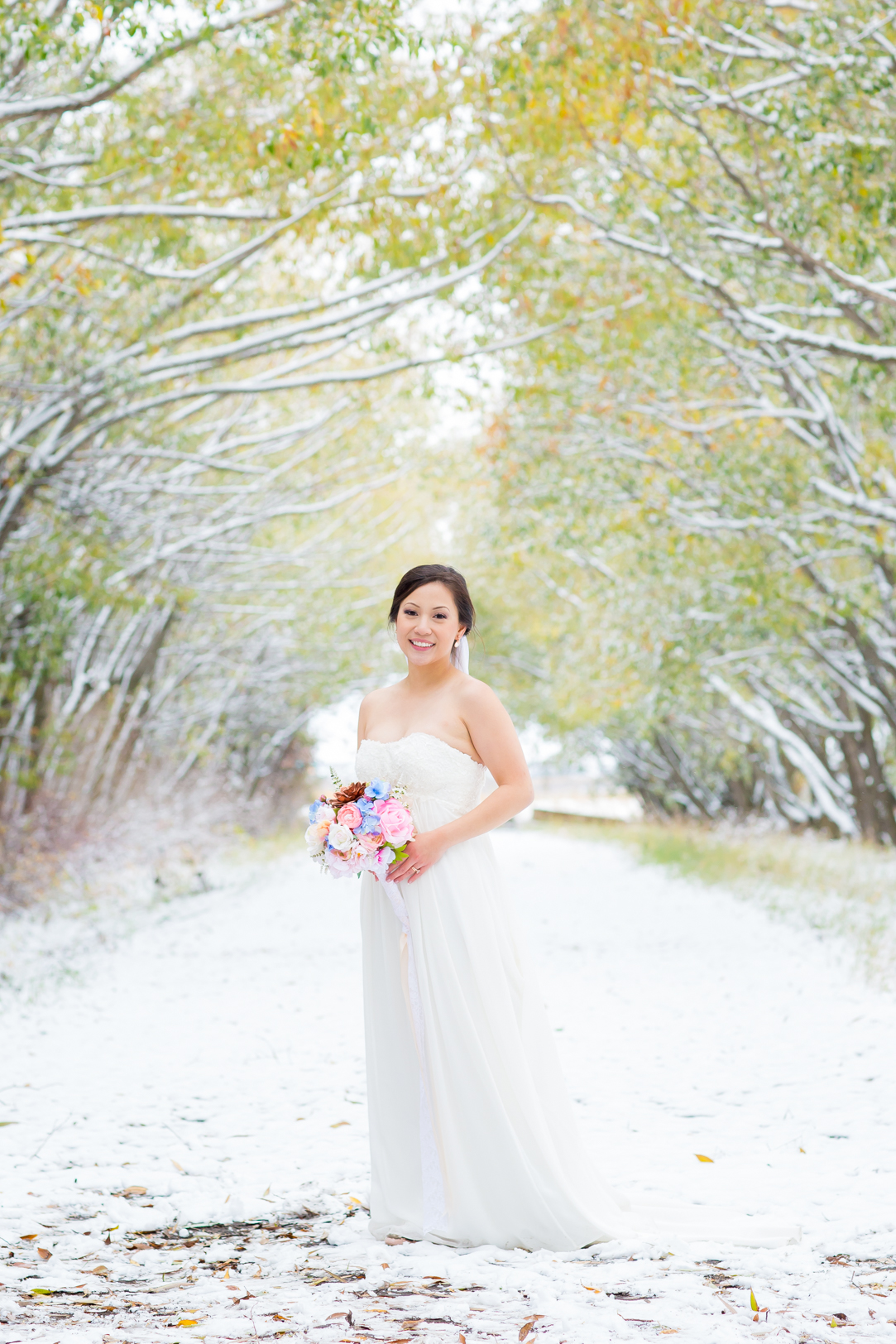elegant winter bride - Edmonton Autumn Wedding