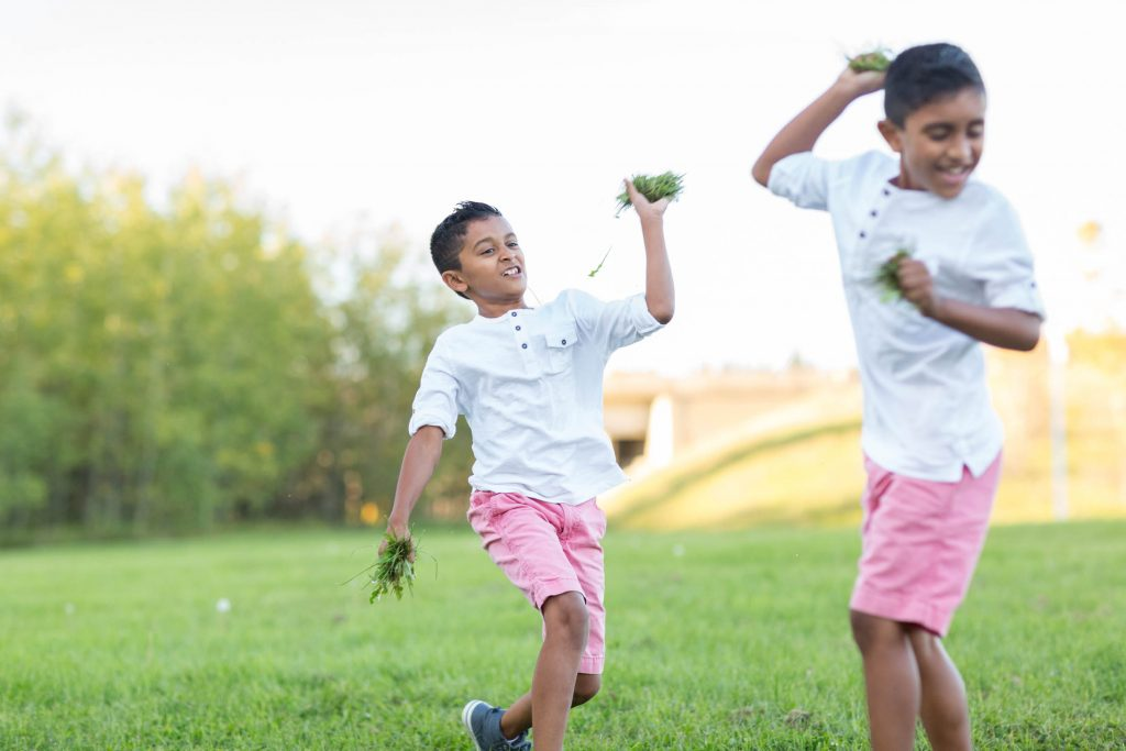A picture of brothers playing - Edmonton Family Photography by Sunny & Jess