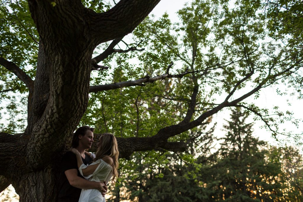 Engagement photos taken under a large tree