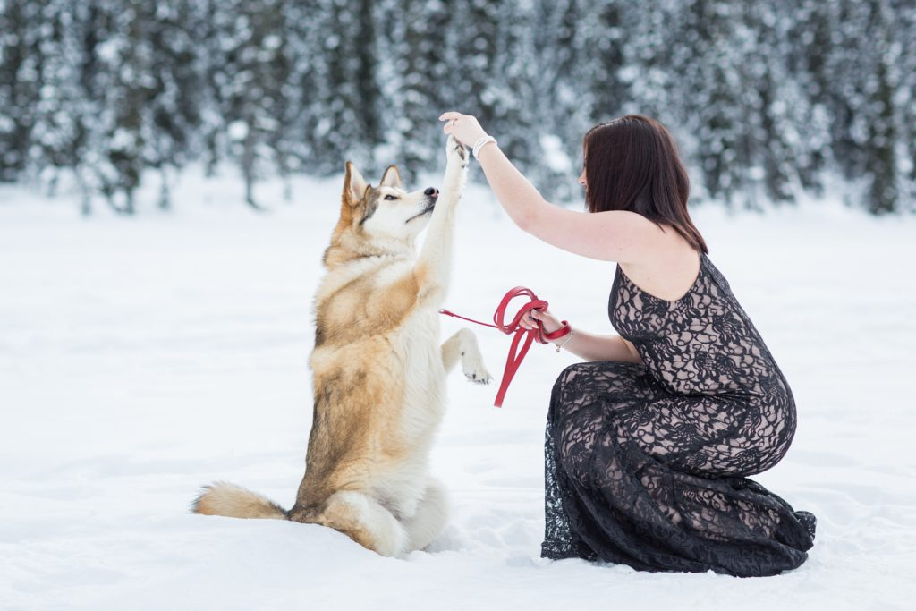 Engagement photos with your dog - Mountain Engagement Photography by Deep Blue Photography