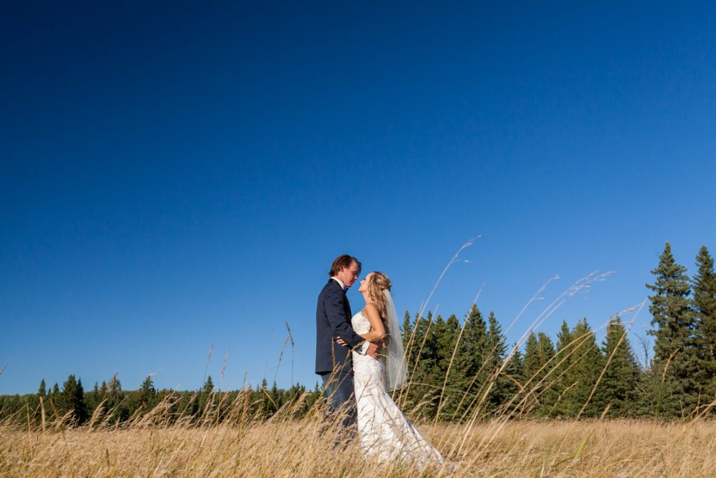 bride and groom standing in a wheat field under a bright blue sky
