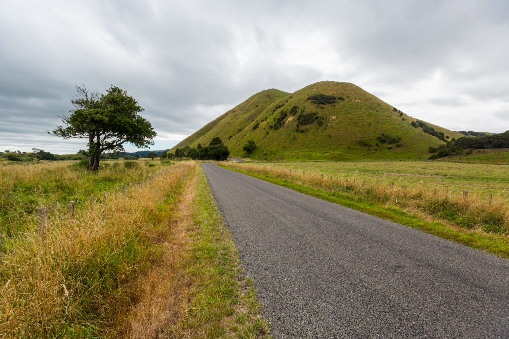 a picture of new zealand country road Driving Around The North Island