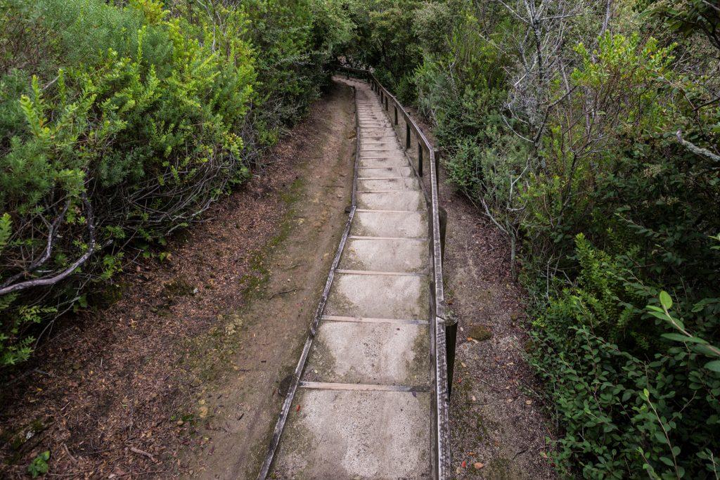 Bluff hill hike napier new zealand