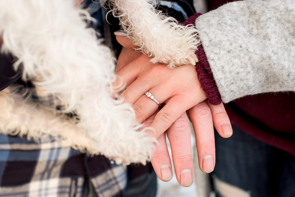 Dog holding hands with owners during engagement session