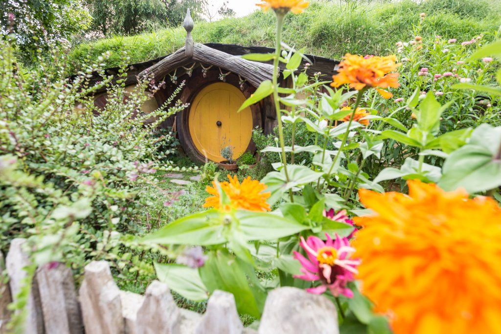 Pictures Of The Hobbiton Movie Set Evening Banquet Tour