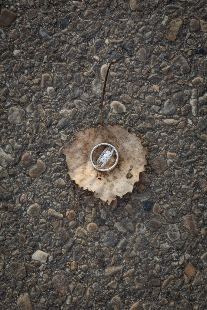 wedding rings sitting on a leaf