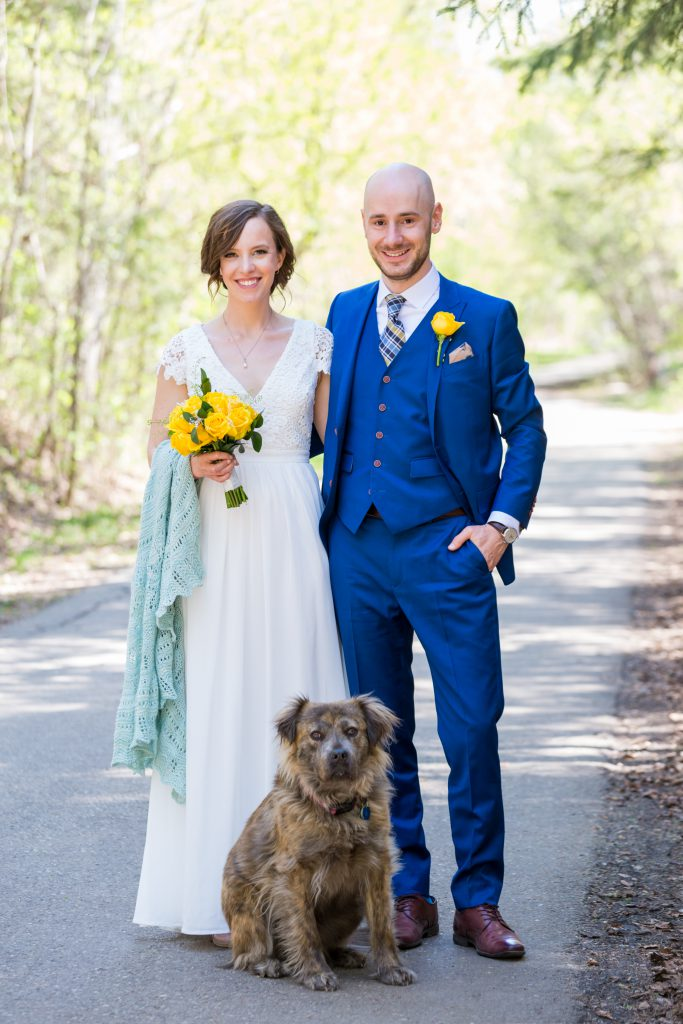 dog in wedding photos