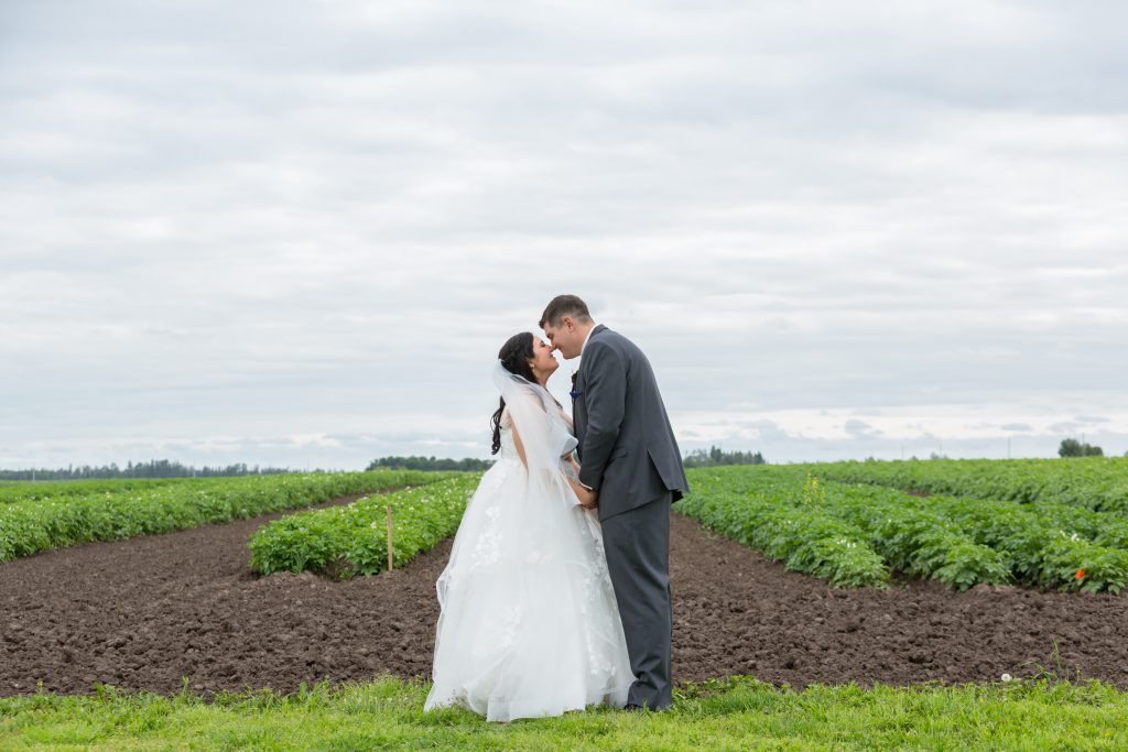 bride and groom country wedding photos in a field